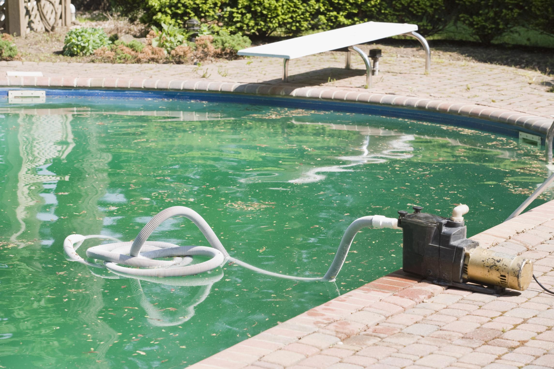 Limpeza de algas de piscina remover manchas e diccas de - Bajar ph piscina casero ...