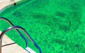Limpeza de agua verde de piscinas remover manchas e diccas de limpeza - Agua de piscina verde ...