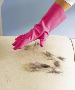 remover pêlos de animais do tecido do sofá